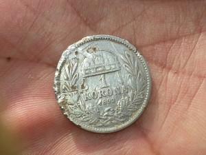 1 korona 1893 spate