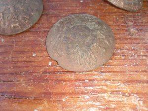 20786157_10210465414726955_290513621_n-1-300x225 Depunerea de coroane la Centenarul batalilor de la Oituz-Cireșoaia