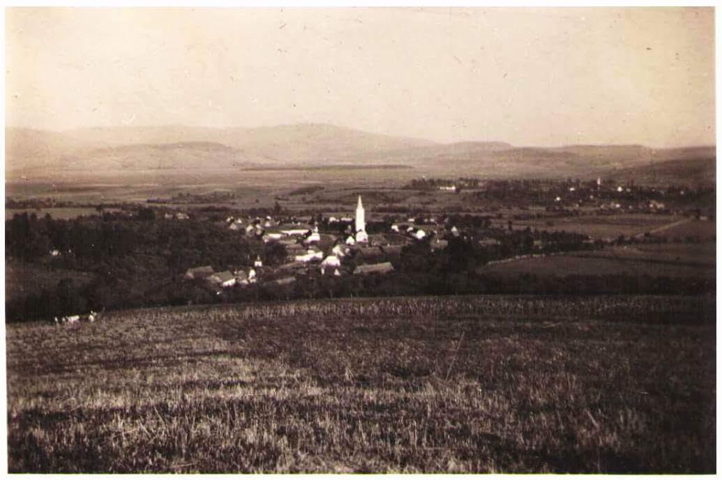 Poza padurea Budacu 1943 si Grupul de vanatoare PUMA